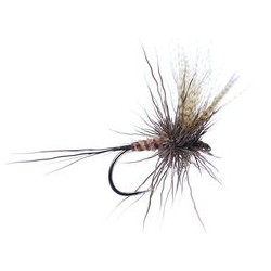 SF Large Chamois Mayfly BL