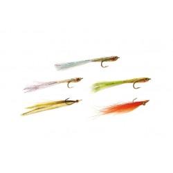 Sea Bass Selection