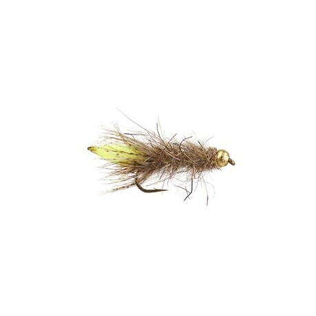 Peeping Caddis Gold 8