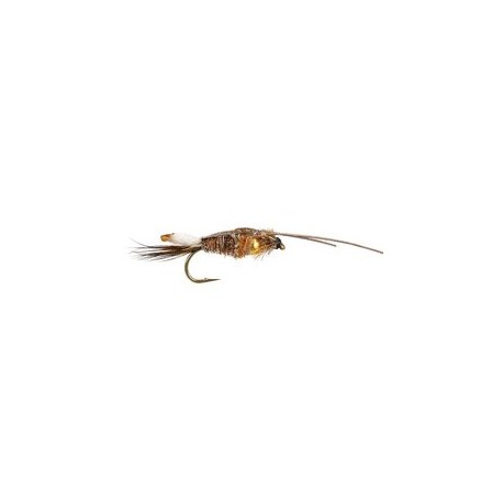 Peeping Caddis Grizzly 8
