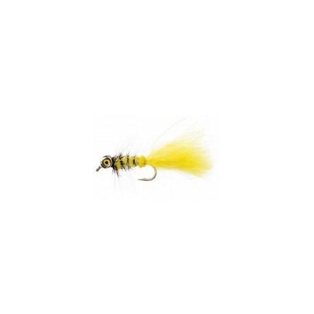 Bead Eye Yellow