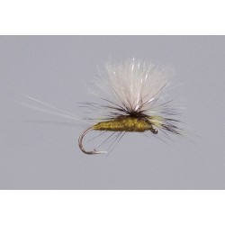Galloup s BWO CDC Sparkle Para