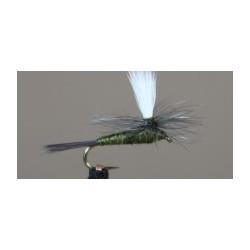 Parachute BWO