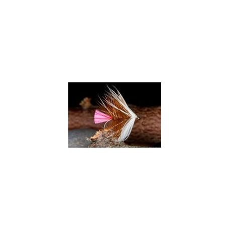 Pink Tail Loch Ordie