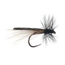 Ales ack Magic Small Stonefly CDC