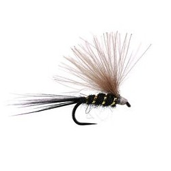 ack Ripped Universal CDC Fly