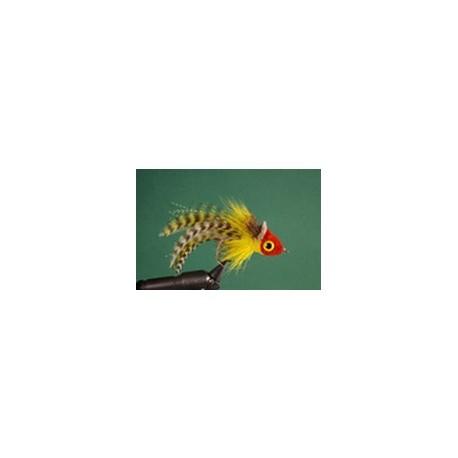 Red and yellow umpqua swimming