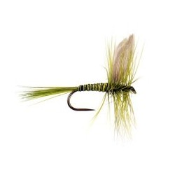 Dry Flies Barbless B.W $2.90