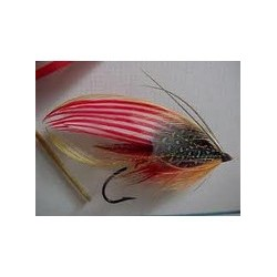 American Flag Salmon