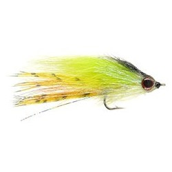 Alters   BJ Minnow   Tiger