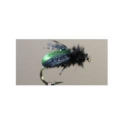 Beetle Kiwi
