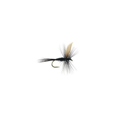 Black Gnat BL
