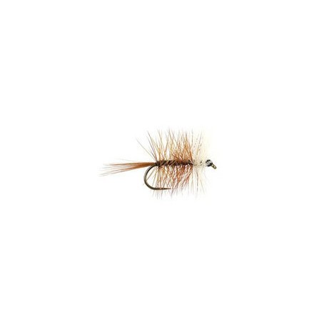 Brown Bivisible BL