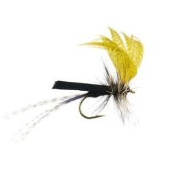 Black Yellow Mayfly