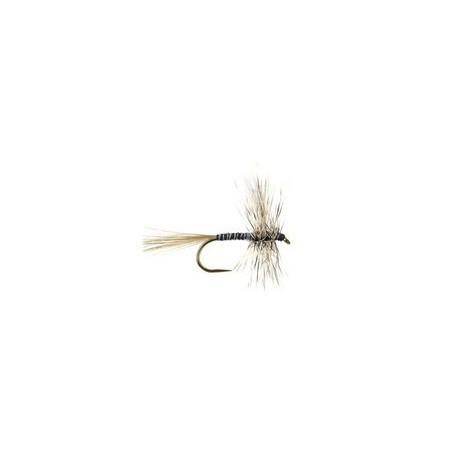 Mosquito BL