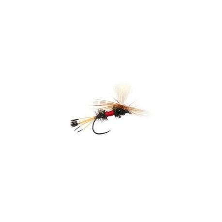 Royal Coochman Parachute BL