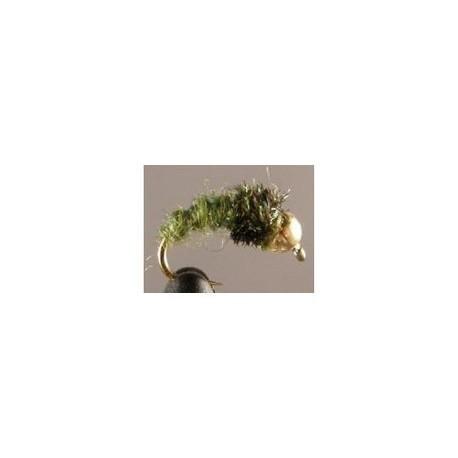 Beadhead Caddis Green Sp